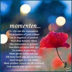 Momenten Love Life Quotes, Heart Quotes, Live Love Life, Dutch Quotes, Albert Einstein Quotes, Cool Writing, Special Quotes, Wishes For You, Happy Moments