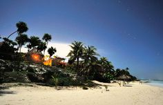 papaya playa - ewy