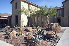 pictures of desert landscaping yard | Recent Photos The Commons Getty Collection Galleries World Map App ...