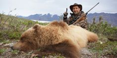 Avaaz - Stop Trump's attack on Endangered Grizzlies! / https://secure.avaaz.org/campaign/en/save_yellowstone_grizzlies/?bgnDSfb&v=94652&cl=12808566380&_checksum=01eb84dbe05cd94f4c0fb79ee00d88c4be289f623c7a3d9d1e1c6358cfe20e12
