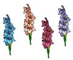 Gladioli. Lucas' birth flower. Tattoo!