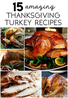 15 Amazing Thanksgiving Turkey Recipes from SixSistersStuff.com   When it comes to preparing for Thanksgiving dinner, nothing is more important that finding the perfect turkey recipe.  Luckily, we've got you covered with 15 of the best Thanksgiving turkey recipes around!
