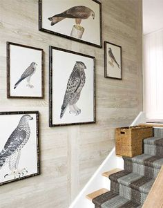 A casual grouping of Swedish bird prints by Olof Rudbeck along the staircase.   - HouseBeautiful.com