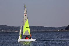 Colorful sails, My kids enjoying each others company, Bald eagles dipping and diving in the air currents,  (Day 7)