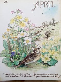 Hey, I found this really awesome Etsy listing at https://www.etsy.com/listing/250920397/vintage-book-plate-month-of-april