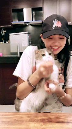Lisa with her adorable kitty Jennie Blackpink, Blackpink Lisa, Cute Korean, Korean Girl, Loona Kim Lip, Blackpink Video, Lisa Blackpink Wallpaper, Black Pink Kpop, Blackpink Memes