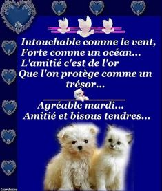 Bon Mardi, Google, Days Of Week, Friendship Love, Sweet Words, Happy Name Day, Handsome Quotes
