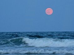Strawberry Pink Moon