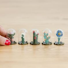 Tiny Terrariums With Miniature Paper Plants, Blooming Cacti And Flowers Terrariums, Cactus Terrarium, Succulent Planters, Cactus Flower, Flower Pots, Cactus Cactus, Flower Bookey, Tall Cactus, Flower Film