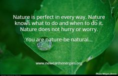 Nature is perfect....