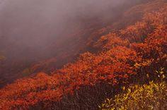 9/21 黒岳