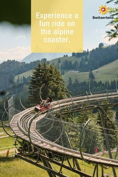 Moleson – learn more about Switzerland's hidden gems Alpine Coaster, Switzerland Tourism, Bobsleigh, Swiss Air, Half Board, Travel Information, Winter Sports, Countryside, Boat