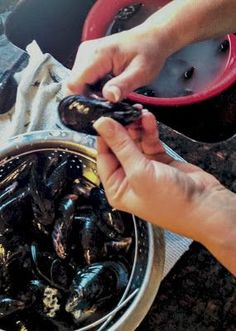 Carrie's Experimental Kitchen: How to Clean & Prepare Mussels How To Clean Mussels, Mussels White Wine, Cooking Tips, Cooking Recipes, Healthy Recipes, Christmas Cooking, Christmas Eve, Fish And Seafood, Seafood Recipes