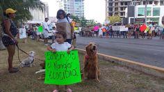 113 Children Fight Against Cancun Mangrove Destruction From Corporate Interests