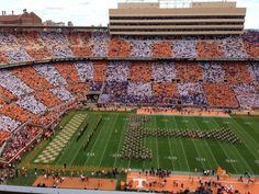 146 Best Tennessee Vols Images Tennessee Football Tennessee