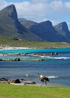 South Africa - Cape Town. This is what you see.