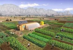 Everything you need to grow food on one acre of land. Great idea for off-grid farming, disaster recovery, and/or community farming, schools, etc. farm-from-a-box