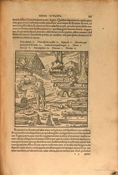 Georgii Agricolae De re metallica libri XII: quibus officia, instrumenta ... - Georg Agricola, Officina Frobeniana (Basilea) - Google Books