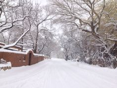 Santa Fe blanketed in snow! My most loved place to be I go as often as I can