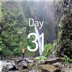 Los chorros de Don Lolo Neon Signs, Day, Waterfalls