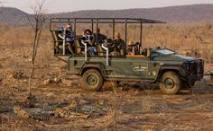 Jaci's Top 10 safari is an exhilarating adventure, a once-in-a-lifetime experience that will colour your memory of Africa forever. African Wild Dog, African Safari, Giraffe, Elephant, Photography Tours, Game Reserve, Wild Dogs, Hyena, Lodges