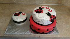 Lady bug first birthday cake and cake smash