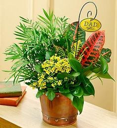 father's day flower arrangement - Google Search