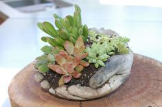 Need a helping hand in the garden?  Try this project, using #QUIKRETE #Concrete Countertop Mix and latex kitchen gloves.  #DIY #LawnOrnaments