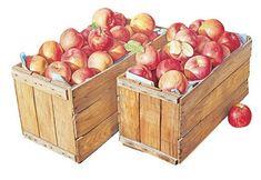 사과 그림만 그리는 작가? 윤병락의 사과 그림 : 네이버 블로그 Fruit Art, Toy Chest, Toys, Blog, Painting, Decor, Apples, Yellow, Activity Toys