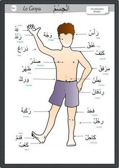 Learning Arabic MSA ( Arabic Vocabulary of Al-Jismu. Arabic Handwriting, Arabic Alphabet For Kids, Spoken Arabic, Learn Arabic Online, Arabic Lessons, Learn Islam, Arabic Language, Learning Arabic, Preschool Science
