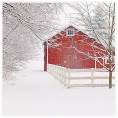 Pottery Barn Red Barn in the Snow by Cindy Taylor ($399) ❤ liked on Polyvore featuring home, home decor, holiday decorations, red home accessories, home wall decor, interior wall decor and holiday wall decorations