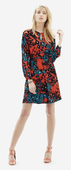 Printed Belted Shift Dress - An easy on, easy go dress that goes straight from 9 to 5 polish to weekend casual.