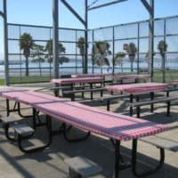 Middle Harbor Shoreline Park picnic tables, covered in plastic. Paper Table, Company Picnic, Picnic Time, China Plates, Table Covers, Outdoor Furniture, Outdoor Decor, Bay Area, Sun Lounger