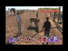 ▶ Funny Japanese TV Show | Japanese Game Show | DERO Chamber 02 to Escape The Big Game Set - YouTube