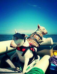 We love boating