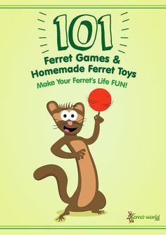 101 Ferret Games & Homemade Ferret Toys                                                                                                                                                     More