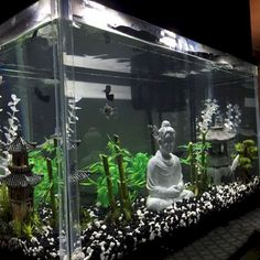 An aquarium is a pleasing method of displaying that you just love nature and that you have a must cope with it. A home aquarium is likely one of the Betta Aquarium, Aquarium Setup, Aquarium Design, Tropical Fish Aquarium, Betta Fish Tank, Fish Aquarium Decorations, Aqua Aquarium, Aquarium Stand, Fish Ocean