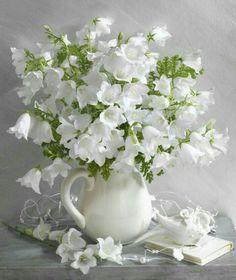 White flowers in white vase All Flowers, Fresh Flowers, White Flowers, Beautiful Flowers, Wedding Flowers, White Roses, Wedding Bouquets, Beautiful Flower Arrangements, Floral Arrangements