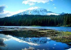 POST NOVO! Existe jeito mais lindo de ver o Mount Rainier do que refletido em um lago no meio da floresta? Reflexion Lake adoro! Esta e outras atrações você confere no roteiro do Mount Rainier National Park em http://ift.tt/1ZbGH4z ou no link do nosso perfil!  #mountrainier #mountrainiernationalpark #washington #usa #estadosunidos #pegadasnaestrada #viajenaviagem #natgeotravel #amazing #awesome #missãovt  #aquelasuaviagem #awesome_earthpix #essemundoenosso #landscape #liveoutdoors…