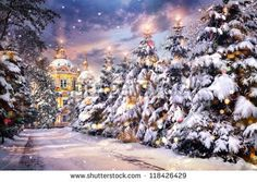 stock-photo-church-with-illuminated-christmas-trees-in-snowfall-on-christmas-eve-in-winter-time-118426429.jpg (450×320)