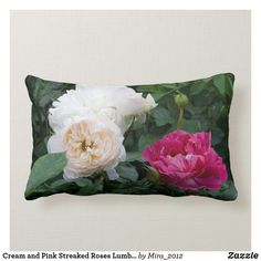 Shop Cream and Pink Streaked Roses Lumbar Pillow created by Personalize it with photos & text or purchase as is! Get Well Flowers, Personalized Chocolate, Get Well Gifts, Lumbar Throw Pillow, Cream Roses, New Home Gifts, Purple Roses, Flower Photos, Spring Flowers