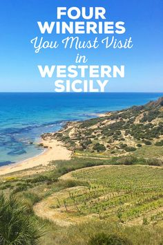 Here are my picks for the 4 wineries you must visit in Western Sicily. They include Donnafugata, Planeta, Firriato and Stemmari wineries.