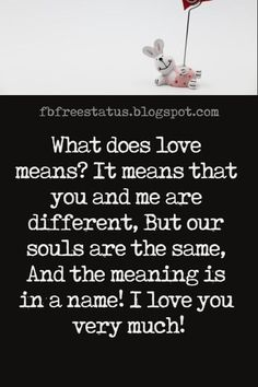Love Text Messages, What does love means? It means that you and me are different, But our souls are the same, And the meaning is in a name! I love you very much!