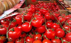 Les fruits et légumes hybrides, cela vous parle ?