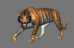 "Hi Dear Guys.....         I modified some of the Features of this AmaZing Tiger Rig to make a SHER KHAN ""look a like"".. This Shot was really a ""Dream come true"" for Mmeeeee... To Animate My Favorite and one the BEST Disney's Villain Character of all times  ""SHER KHAN""  ,  Thank you ""CG Spectrum"" for the  Free Tiger Animation Rig..  I took Around a Week to do this Character Animation Test.. 7 Days  (14 Hours a Day )  I enjoyed the whole Process.....  I Hope u Guys will enjoy it tooo...    ;)…"