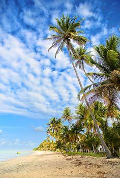 Praia dos Carneiros, Tamandaré, Pernambuco, Brasil...