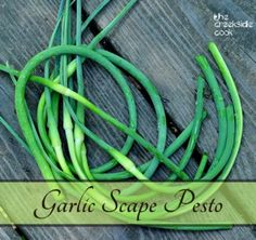 Sooo good.  Rocking with spring flavor - Garlic Scape Pesto | The Creekside Cook