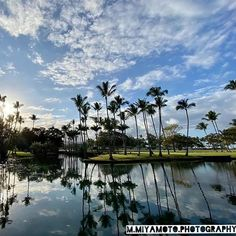 We are among leading DMC companies hosting private events and lavish weddings in Hawaii. Big Island, Island Life, Kona Coast, Hawaiian Luau, Ohana, Beautiful Day, Reflection, Entertaining, World