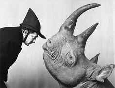 Dali says hello to a rhino