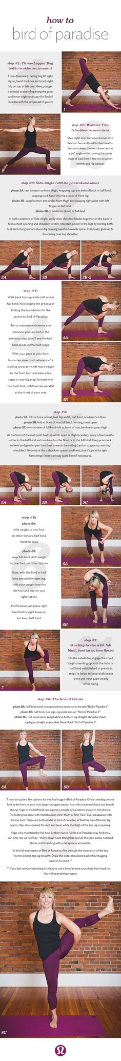 how to bird of paradise in 8 steps - lululemon blog // I love it when a teacher has this in their sequence. So fun:)